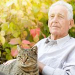 Senior Care in Charlotte NC: Tips for Giving Your Parent the Benefits of Pet Ownership during Adopt-a-Cat Month